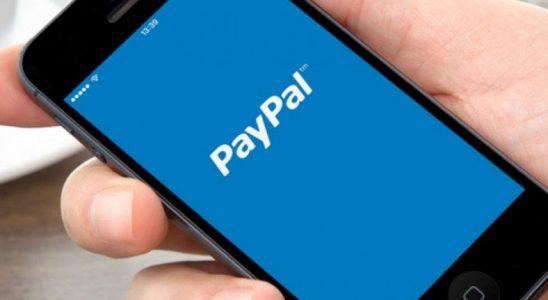 Twitter, Bir Şahsın PayPal Kimlik Avı Dolandırıcılığı Yapmasına İzin Verdi
