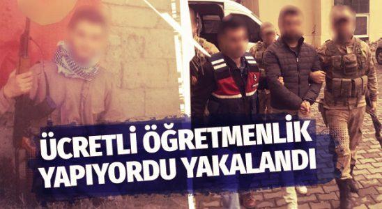 Mektepte fiyatlı hocalık yapan PKK'lı tutuldu