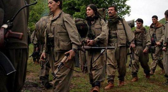 PKK o ülkeye dilendi! Türkiye'ye izin vermeyin