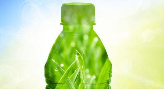 Bilim İnsanları, Gıda Kutularında Kullanılabilecek Biyoplastikler Geliştirdi
