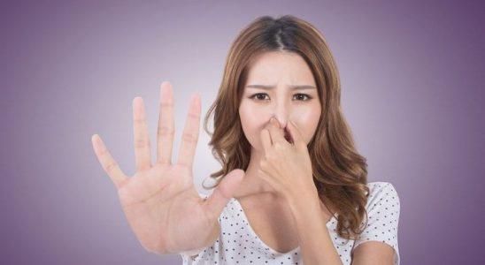 Burnunuza Gelen Makûs Kokular, Hafızanızı Kuvvetlendiriyor
