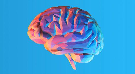 Sadece 3 Sualden Oluşan Dünyanın En Kısa IQ Testi