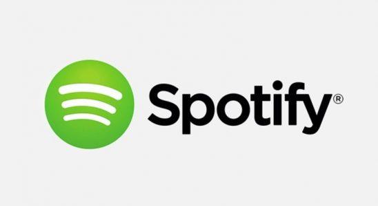 Spotify, iPad'in Çoklu Misyon İşlevinden Yararlanılacak Bir Aktüelleme Yayınladı