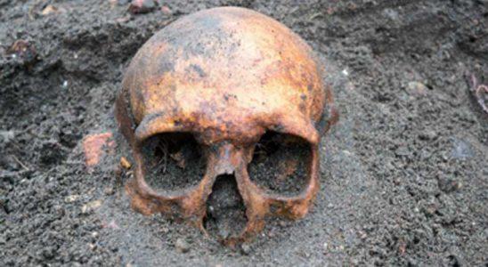 Yunanistan'da Çağdaş İnsanlığa Ait Avrupa'nın En Daha Önceki Fosili Bulundu