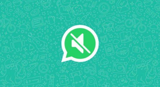 WhatsApp, Video Sesini Kapatma Özelliğini Tüm Android Kullanıcıları İçin Yayınladı