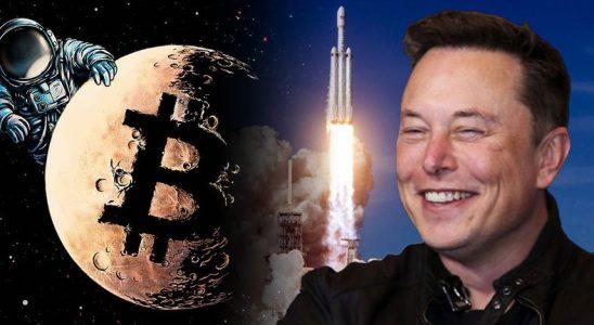 Elon Musk, Hangi Kripto Paralara Sahip Olduğunu Açıkladı (SpaceX Sürprizi)