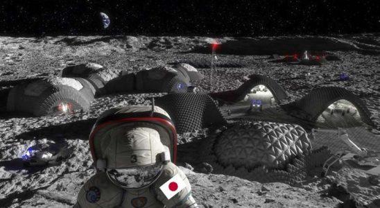 Dünya'ya Vedanın Sinyalleri: Japonya, Ay'da Gıda Üretimini Araştırmaya Başlıyor