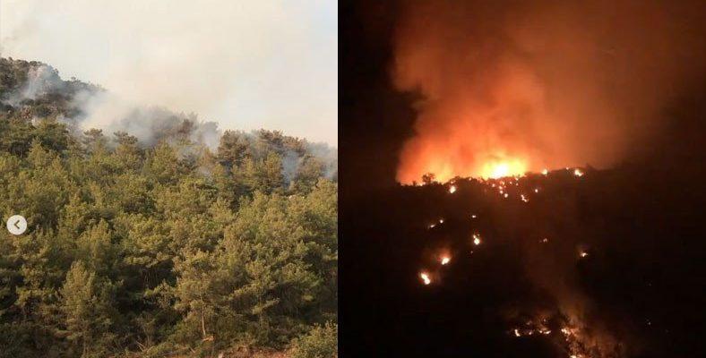 Muğla'da Vatandaşların Gün Boyu Söndürmeye Çalıştıkları Küçük Bir Yangın, Bütün Tepeyi Sardı: Bir Tane Helikopter ve Uçak Müdahale Etmedi