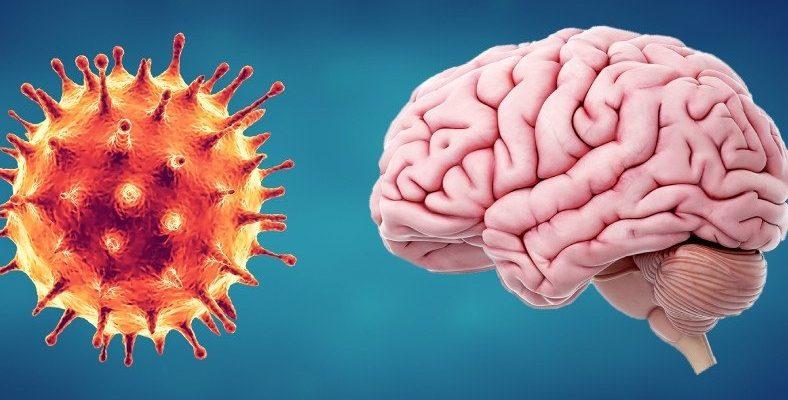 Dikkat Çeken Araştırma: COVID-19 Beyni Küçültüyor